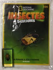 EY. INSECTES & AUTRES BESTIOLES (3)