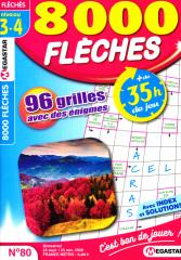 MG 8000 FLECHES